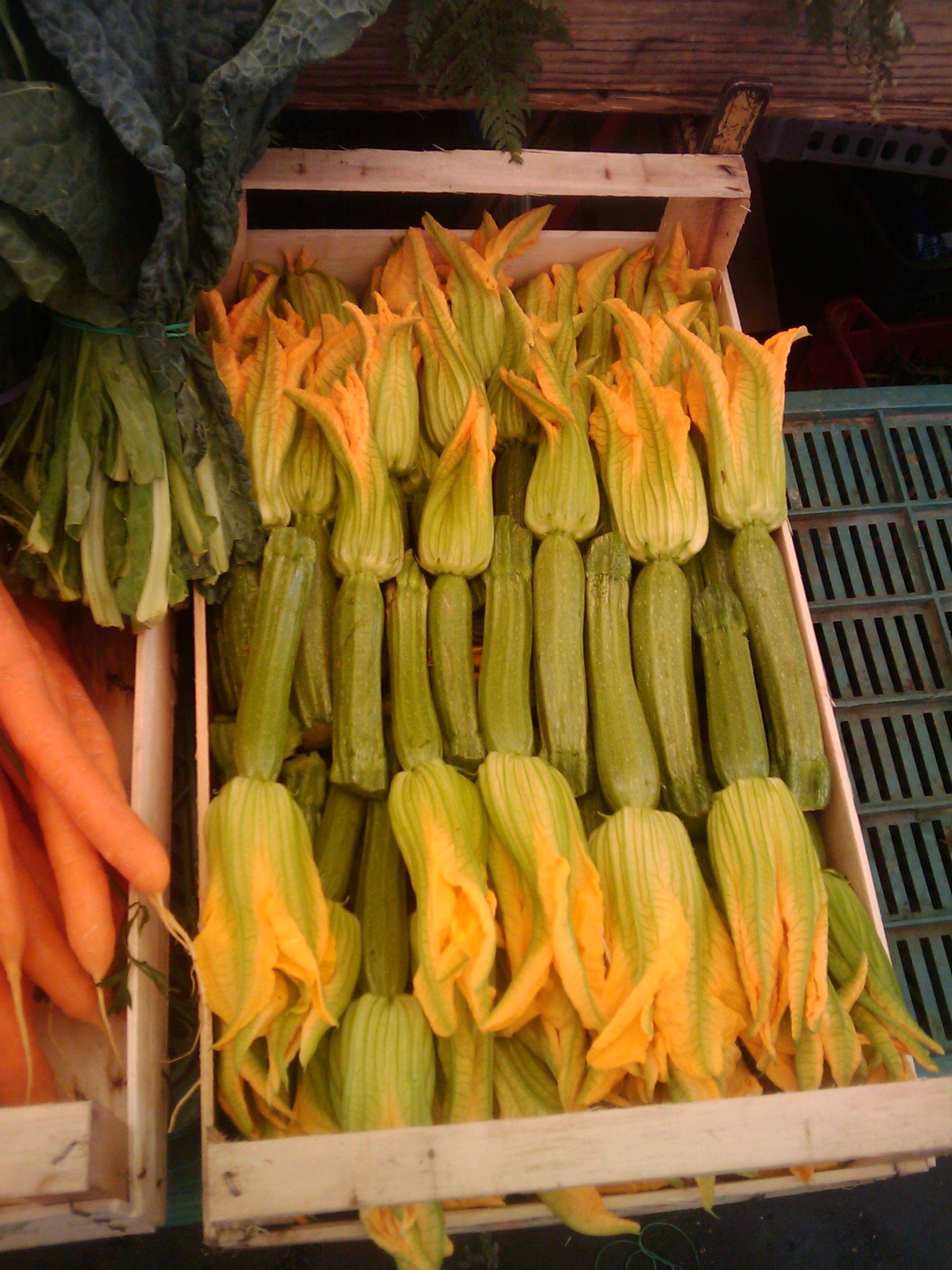 Fiori di zucca (zucchini flowerettes); Photo, Susan McCrory