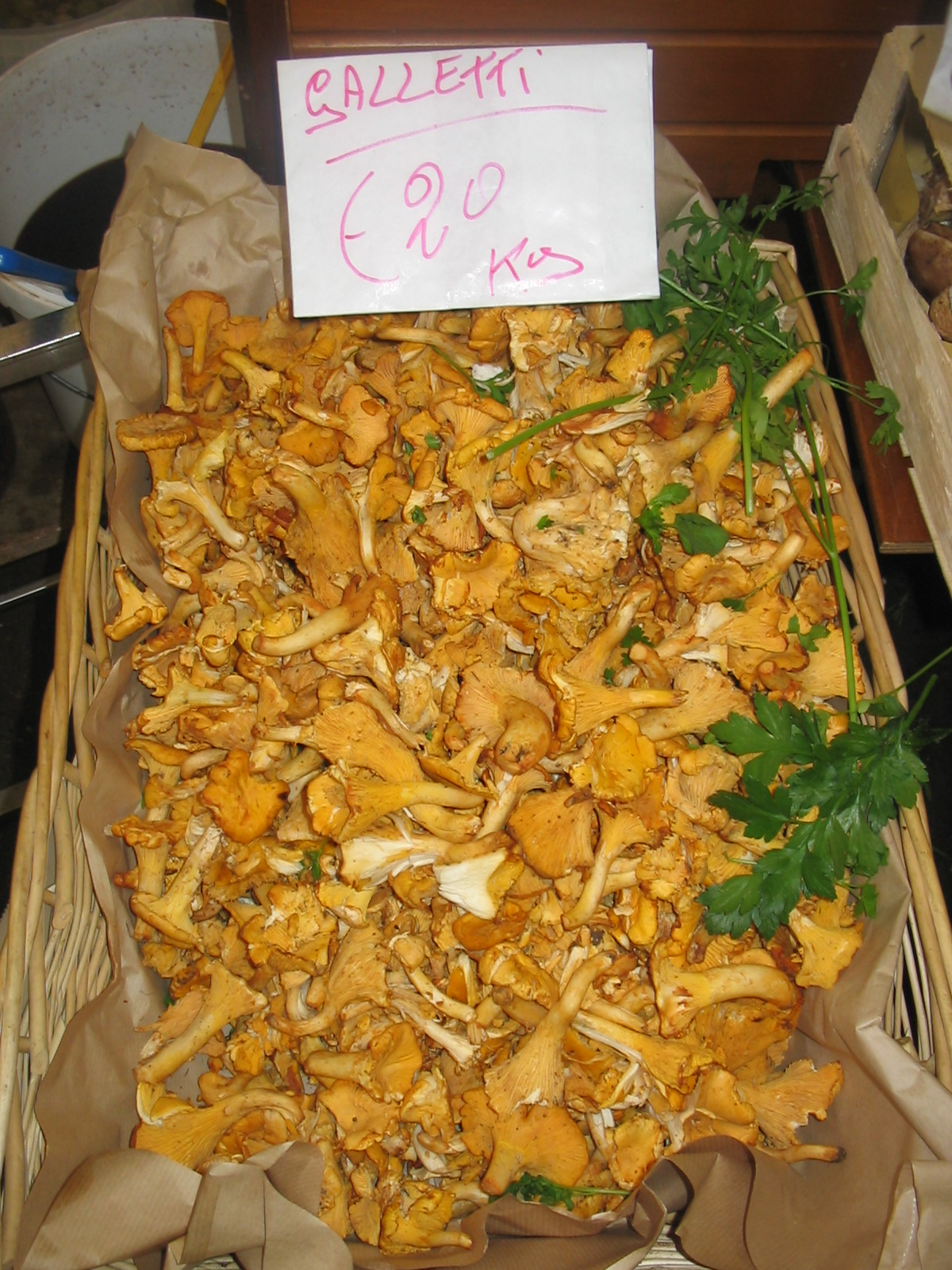 Chanterelle mushrooms; Photo, Susan McCrory