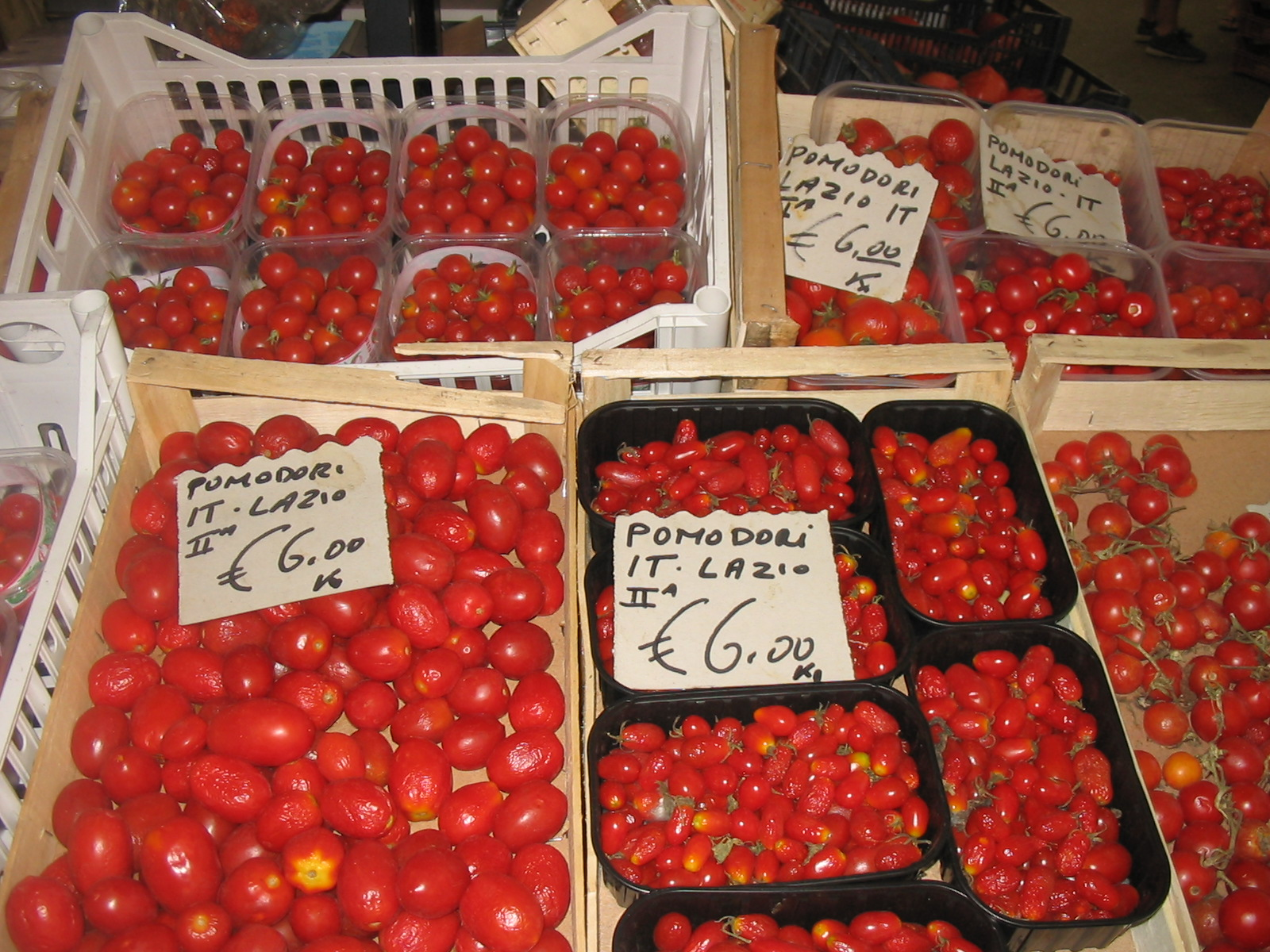 Tomatoes from Lazio; Photo, Susan McCrory